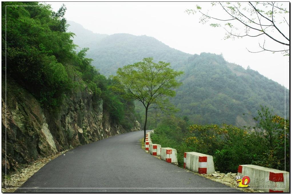 這是平水到王化之間,一段秀美的山間公路.
